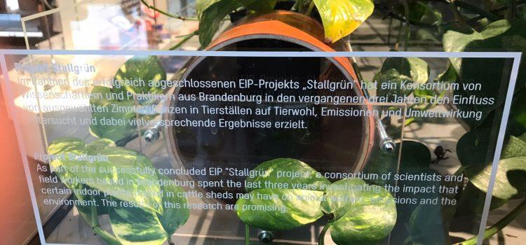 """EIP-Projekt """"Stallgrün"""" im Humboldt-Forum ausgestellt"""